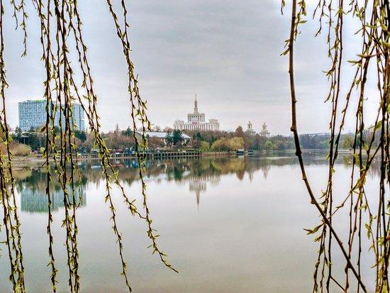 Herastrau Park: Park 1