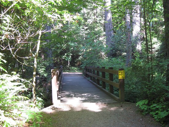 Denman Island, Canada: Bridge over Little George Creek, a salmon spawning creek.