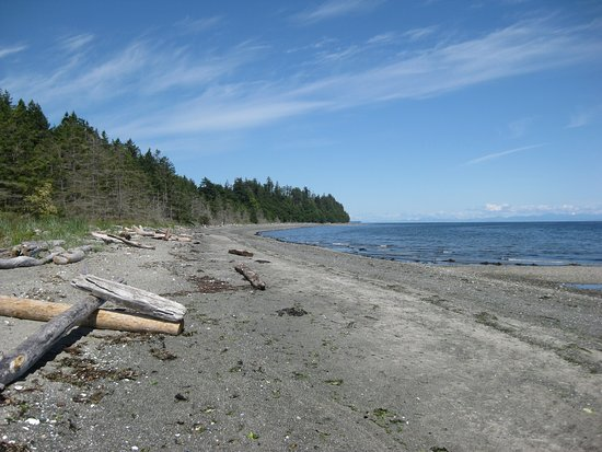 Denman Island, Canada: Beach at Fillongley park.