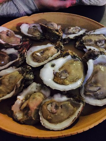 Panacea, FL: Apalachicola Oysters