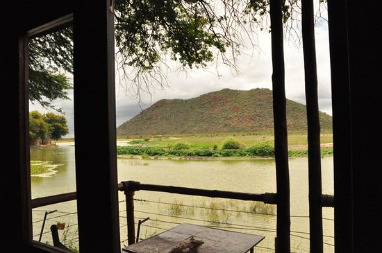 Tau Game Lodge: Blick aus dem Zimmer auf das Wasserloch