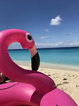 Sandy Point National Wildlife Refuge : Take a float like I did...