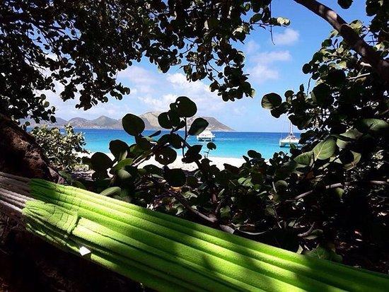 Tintamarre Island: photo0.jpg