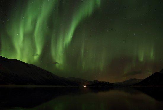 Sortland, Noruega: A stunning dancing display