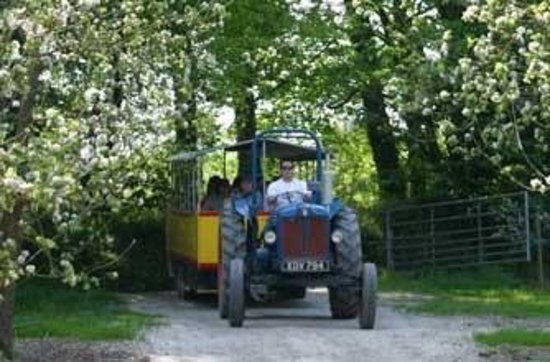 Truro, UK: Tractor ride