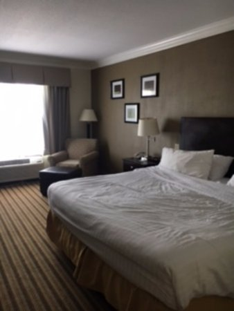 Holiday Inn Express Hotel & Suites Byron: King Bed