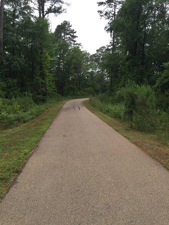 Ridgeland, MS: A typical trail