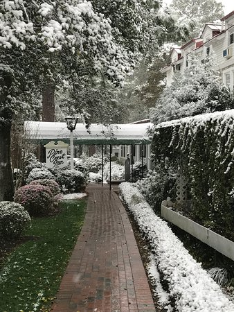 Pinehurst, Kuzey Carolina: Snow Covered Pine Crest