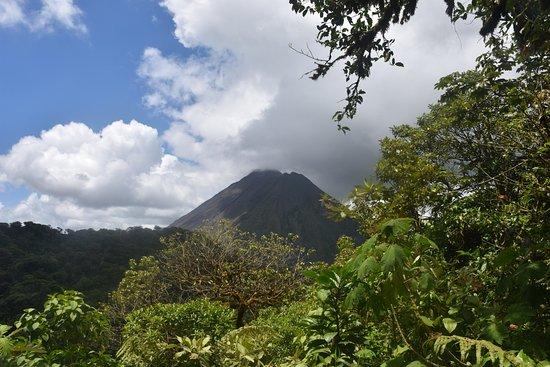Parc et Jardin de Cerro Chato ANC : From the top