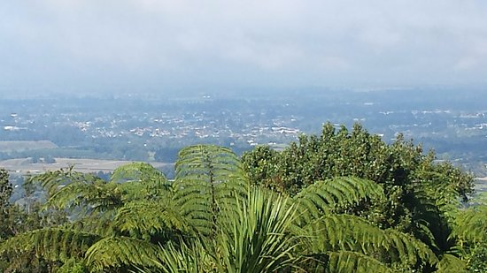 Maungakawa Scenic Reserve: A sample of the view. Rain is coming in from the north-west.