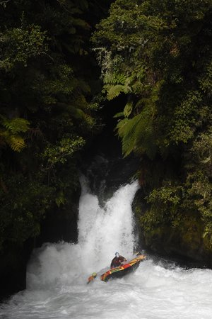 Okere Falls, New Zealand: The nature around is also amazing