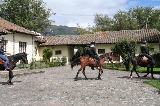 Machachi, Equador: Preparandose para cabalgata en PapaGayo Cotopaxi