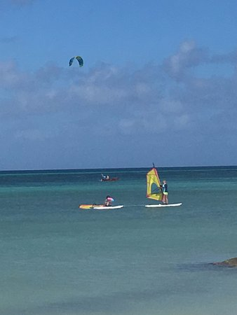 Malmok Beach, Aruba: 7year old learning to lift the sail, attached to Irene, Queen of Windsurfing