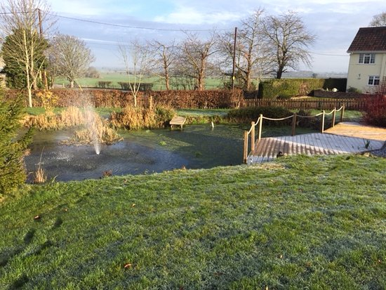 Edington, UK: The front garden where guests can have breakfast by the pond in summer