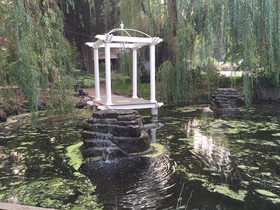 The Willows Inn: Waterfalls & pergola