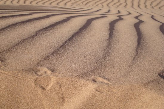 Merzouga, Marruecos: Patterns in the sand