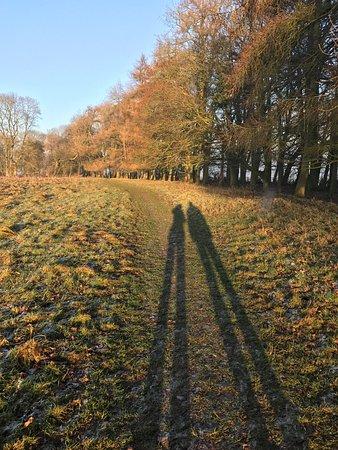 Daventry, UK: Autumn