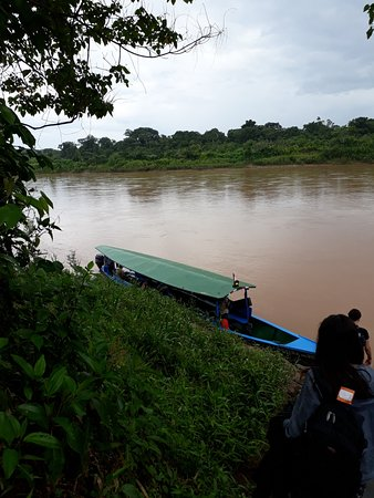 Posada Amazonas: Boat arriving at lodge with guests