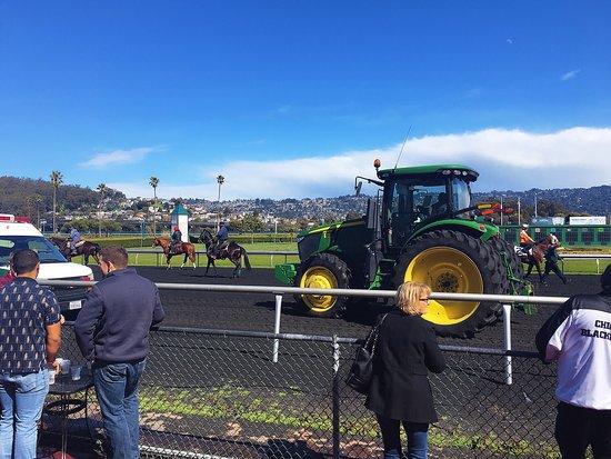 Golden Gate Fields: photo2.jpg