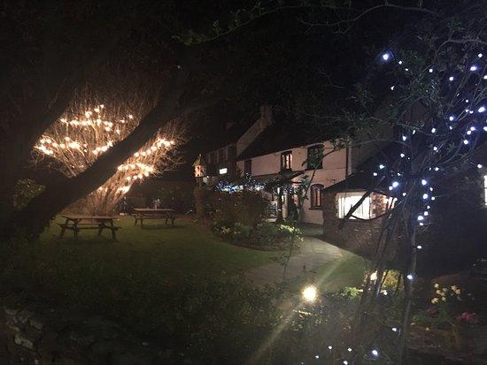 Уск, UK: The garden