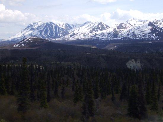 Foto de Glacier View