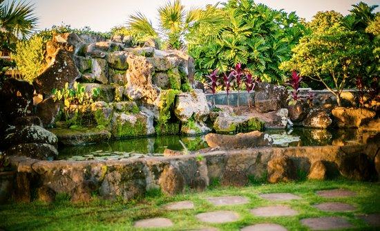 Mililani, Havaí: Mariʻs Gardens Showcase Aquaponic System.