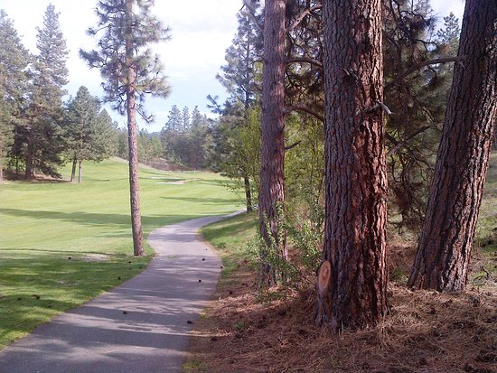 Kelowna, Canada: At the bottom of a downhill dogleg left - green in the distance.
