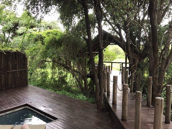 Jock Safari Lodge: photo5.jpg
