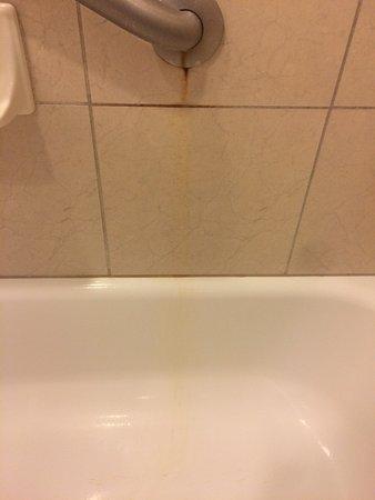 Hilton Melbourne Rialto Place: Shower stain. Melbourne Hilton Rialto.