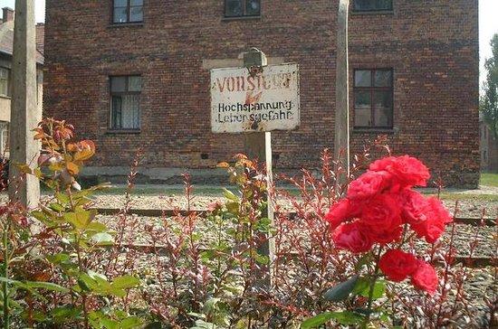 Auschwitz Birkenau Tour from Krakow and...
