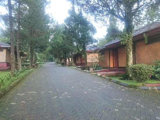 Area Bungalow Jambu Picture Of Sari Ater Hotel Bandung Tripadvisor