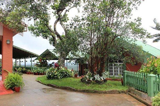 Nesting Grounds Home Stay