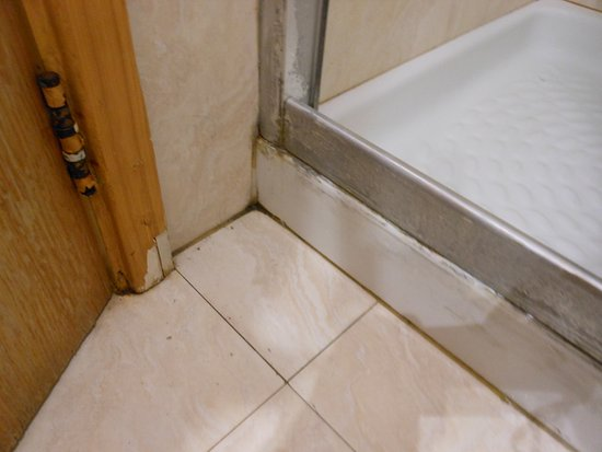 Water Leaks From The Shower And Has Caused The Timber