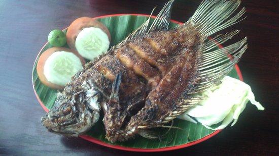 Reds Dipo : ikan nila goreng