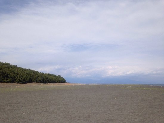 Miho Seacoast (Miho no Matsubara Beach): photo0.jpg