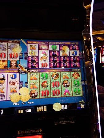 Northern california gaming casinos conrads treasury casino
