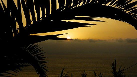 Casa Parsons B&B : sunrise from the garden