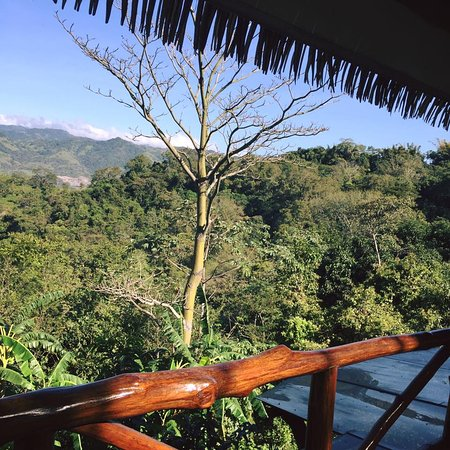 San Pablo, Costa Rica: Yoga shala view