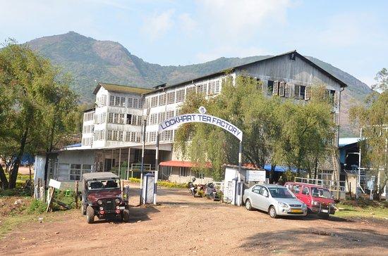 Devikulam, Ινδία: Lockhart Tea Factory