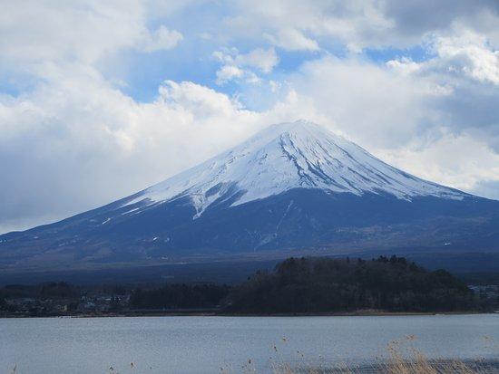 Oishi Park: 2017年3月8日の写真