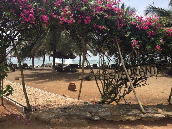 Foto de Abandze Beach Resort