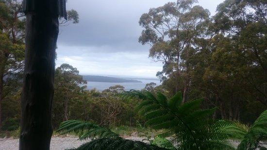St Helens, Australia: DSC_0438_large.jpg