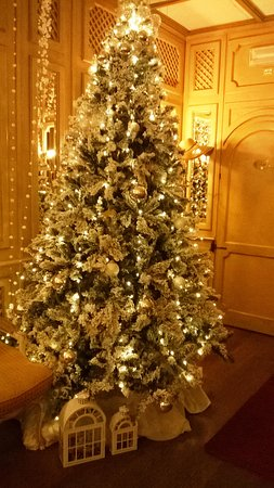 Villa Laguna: Hall in the hotel with New Year tree. 2016
