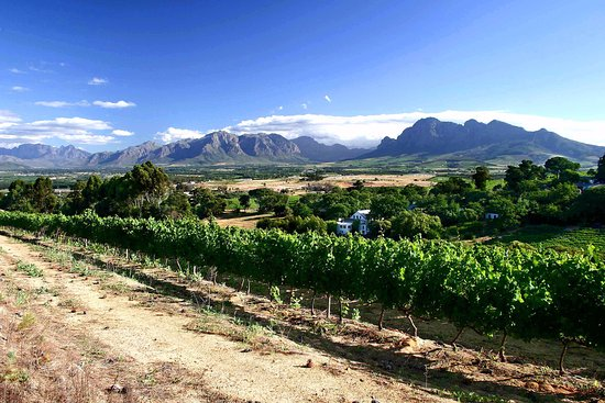 Paarl, Afrique du Sud : Scenic view from Zandwijk