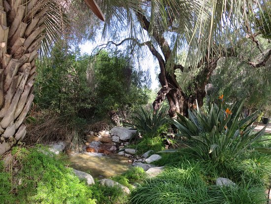Santa Fe Springs, CA: Old trees and creek, waterfalling into the indian exhibit