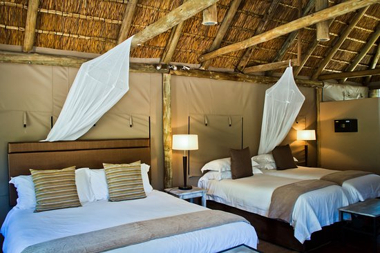 Entabeni Game Reserve, South Africa: Family Tent