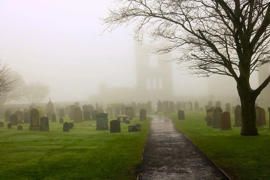 St Andrews Cathedral: Foggy and Formidable