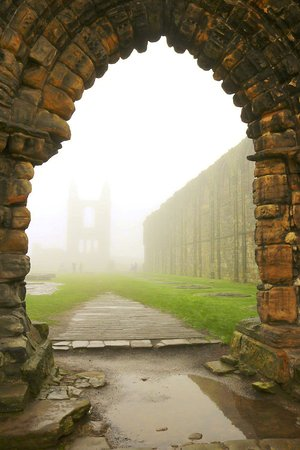 St Andrews Cathedral: Cathedral Ruins on a foggy day