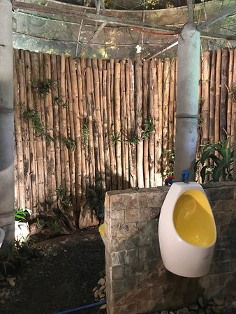Ilog Maria Honeybee Farm: Beehives in the meadow, front window of the farm store, and interior of the bathroom