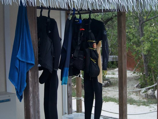 Tiny, Canada: Wet suits drying